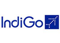 Indogo